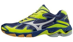 Кроссовки MIZUNO WAVE BOLT 5 V1GA1660-02