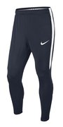 Брюки NIKE Squad 17 Training Pant 832276-452