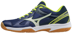 Кроссовки Mizuno CYCLONE SPEED V1GA1780-71