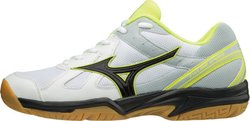 Кроссовки MIZUNO CYCLONE SPEED V1GA1780-44