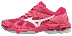 Кроссовки MIZUNO WAVE BOLT 7 (W) V1GC1860-61